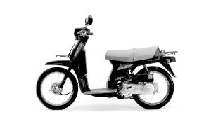 SH 75 SCOOPY