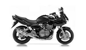 GSF 600 N BANDIT 01-04 (WVA8)