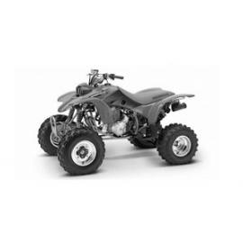 TRX 400 EX SPORTRAX 99-04