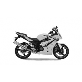 ROADSPORT 125 R 07-15 (BA8)
